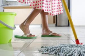 Lei que dá direitos às domésticas emperra