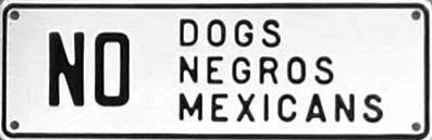 Origens, conceitos e sistemas racistas - por Martiniano J. Silva