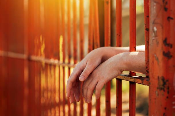 """""""Agora, você me fez sentir saudades da rua"""": o direito à educação e as mulheres negras na maior penitenciária feminina da América Latina"""