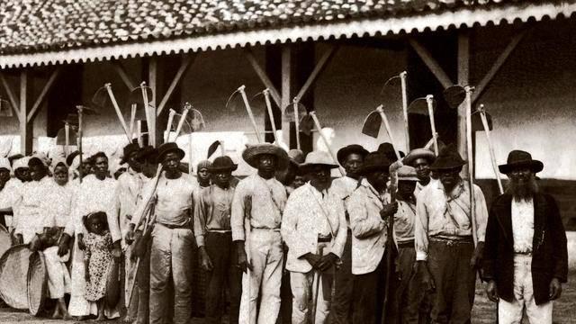 Adesivo De Parede Unicornio Mercado Livre ~ A História da Escravid u00e3o Negra no Brasil Geledés