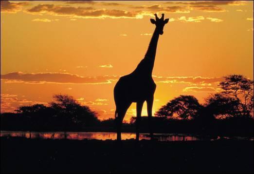 África do Sul007