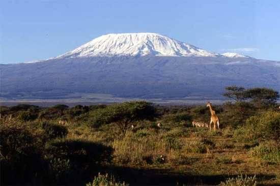 a África apresenta um rico ecossistema com florestas, savanas e até montanhas onde há neve no cume.