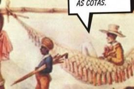 o peso da história: a escravidão e as cotas