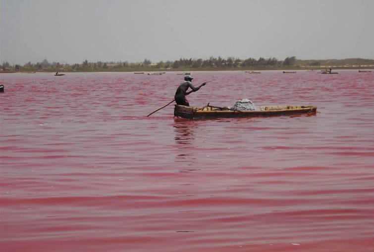 Senegal018