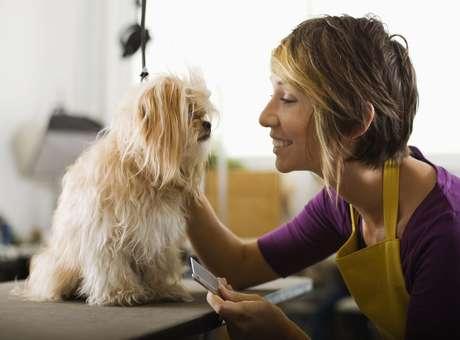 Um terço das mulheres prefere cachorro a namorado