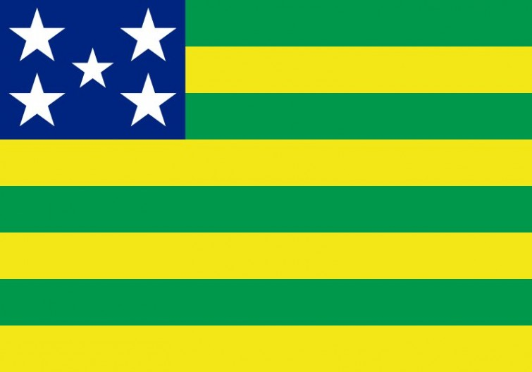 Goiás Taxa de homicídio (número de mortes para cada 100 mil negros) - 42,8