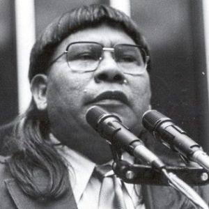 Sem representatividade no Congresso, eleições têm 85 candidatos indígenas