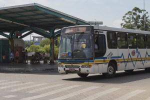 Há oito linhas com 261 veículos em dias úteis que vão do centro até o bairro | Foto: Filipe Castilhos/Sul21
