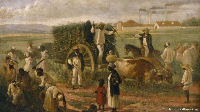 Escravos na plantação de cana de açúcar em Cuba: pintura de Patricio de Landaluze (1874)