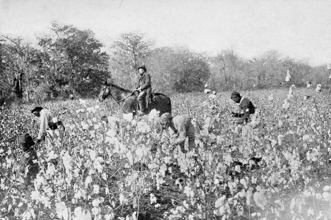 Cotton-slavary – mississipi