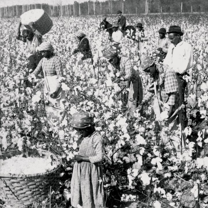 Cotton-slavary2 – inglaterra