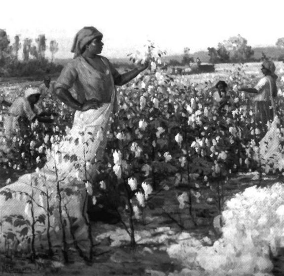 Cotton-slavary3 eua