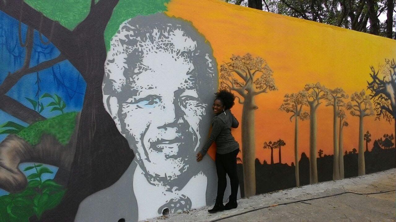 """""""Eu sou Madiba! Sou a voz da igualdade"""" – A experiência de uma escola de  educação infantil no cumprimento da Lei 10.639/03"""