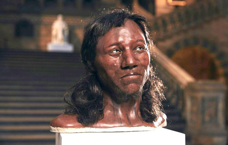 """Foto fornecida pelo Museu de História Natural de Londres mostra o rosto do chamado """"Homem de Cheddar"""". (Foto: LONDON NATURAL HISTORY MUSEUM / EFE)"""