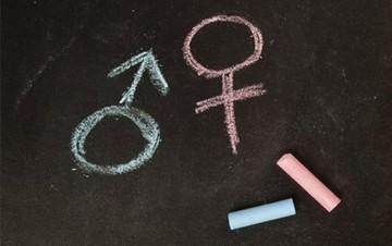 Uma questão de gênero