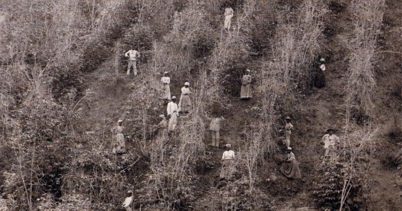 Foto do livro Emancipação, Inclusão e Exclusão – Desafios do Passado e do Presente – Foto: Reprodução / Jornal USP