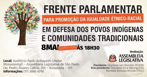 Frente Parlamentar Promoção da Igualdade Étnico-Racial