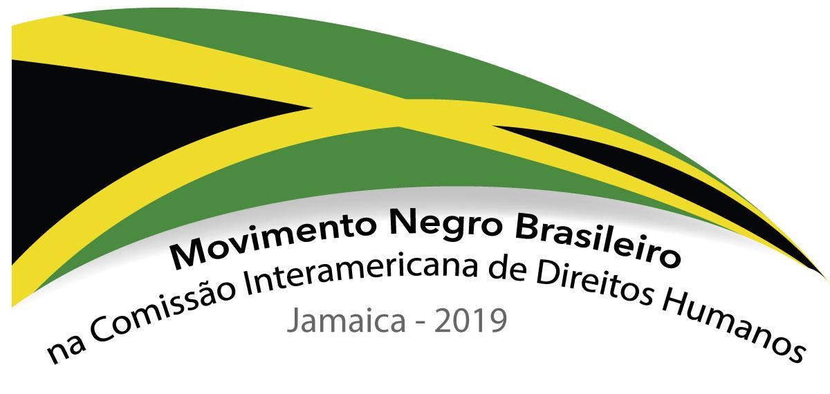 Movimento Negro Brasileiro é recebido pela Comissão de Direitos Humanos da OEA