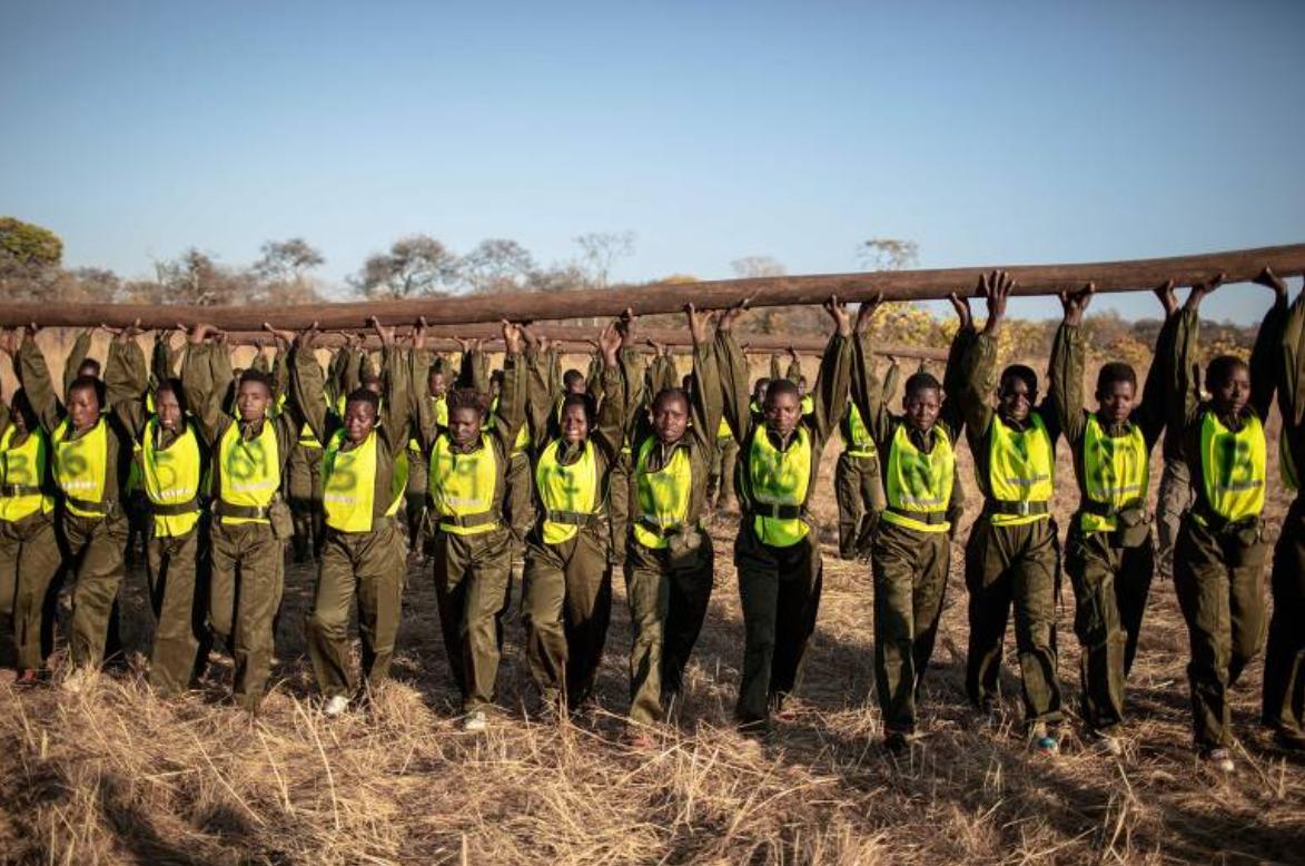 As mulheres que combatem a caça ilegal no Zimbábue